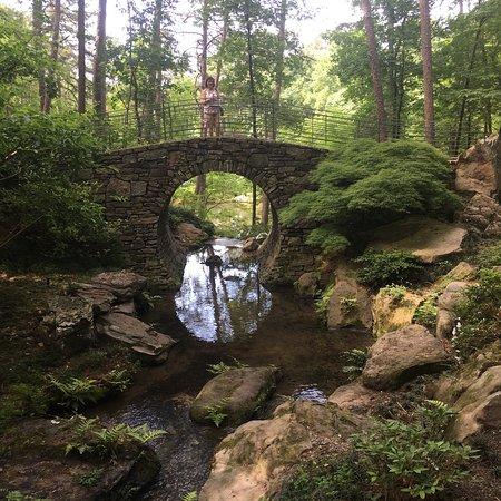 Garvan Woodland Gardens: photo2.jpg