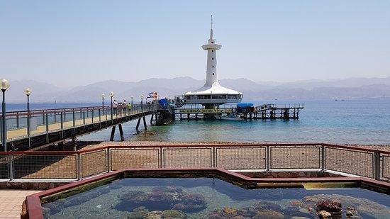Underwater Observatory Marine Park: Подводная обсерватория