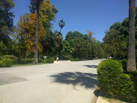 Parque de Maria Luisa: IMG_20180517_150631_large.jpg
