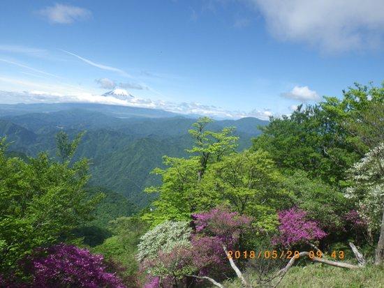 Mt. Aogatake (Hinokiboramaru)