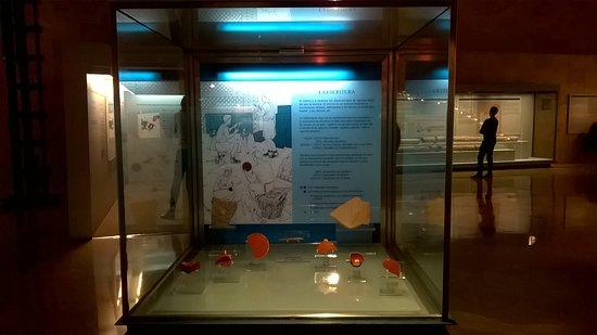 Museo del Foro de Caesaraugusta: Vitrinas.
