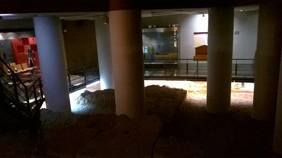 Museo del Puerto Romano: Vista del museo.