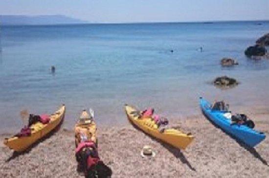 Halvdag Sea Kayak Trip