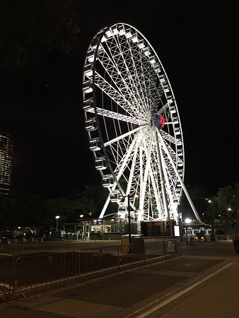 Wheel of Brisbane: View of the wheel by night