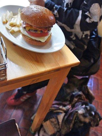 テラス席ならペット同伴可能。状況が許せば店内も同伴可能なことあり。