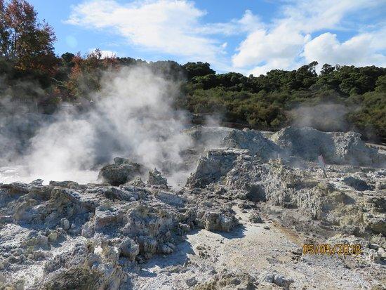 Tikitere, نيوزيلندا: The start of the walk