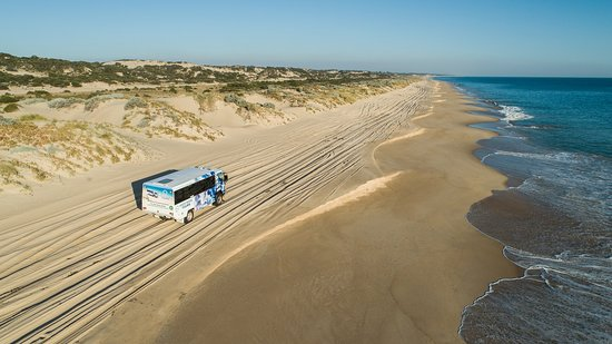 Mandurah, Australia: Our 4x4 Bus on Preston Beach