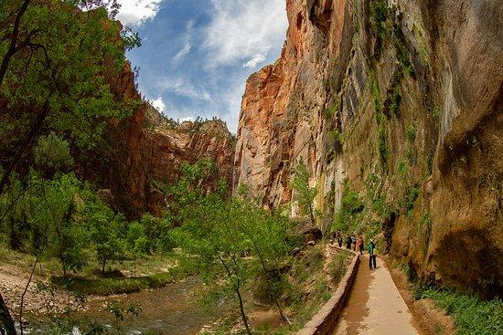 Zion Canyon Scenic Drive: Zion National Park (Riverside Walk)