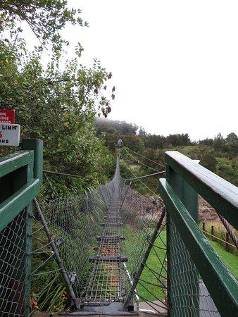Nelson-Tasman Region, Nueva Zelanda: Just the start of the fun!