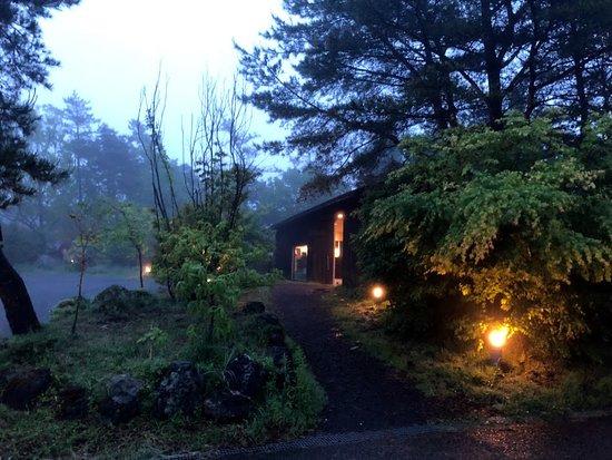 宿泊の建物までは森の中を進む感じ , Picture of Tora no Yu
