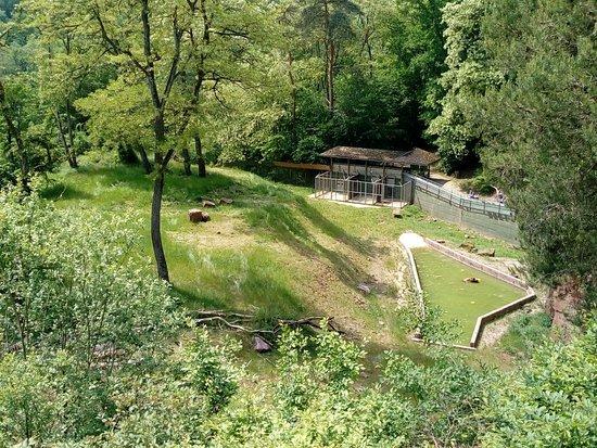 Gondorf b Bitburg, Niemcy: IMG_20180520_125919_large.jpg