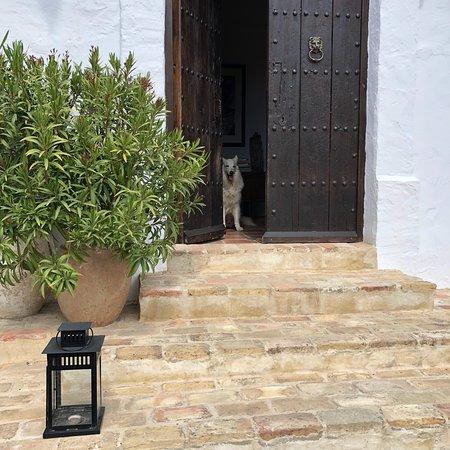 Alcalá del Valle, España: photo4.jpg