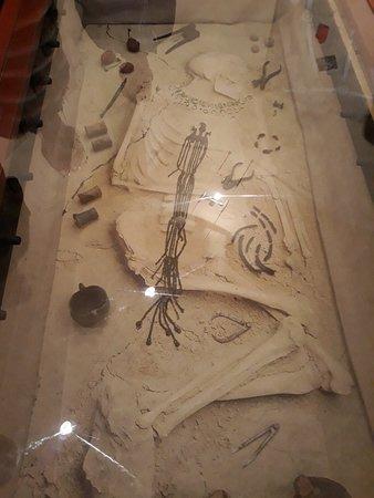 Centro di Documentazione Archeologica di Novilara