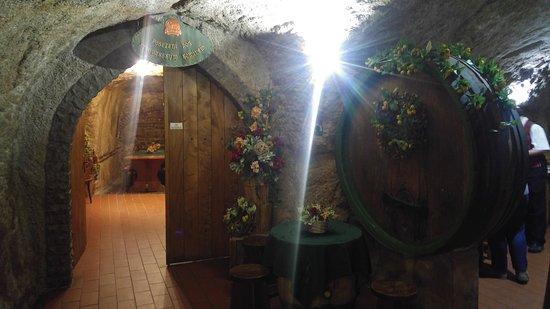 Chodova Plana, Czech Republic: What an amazing setup