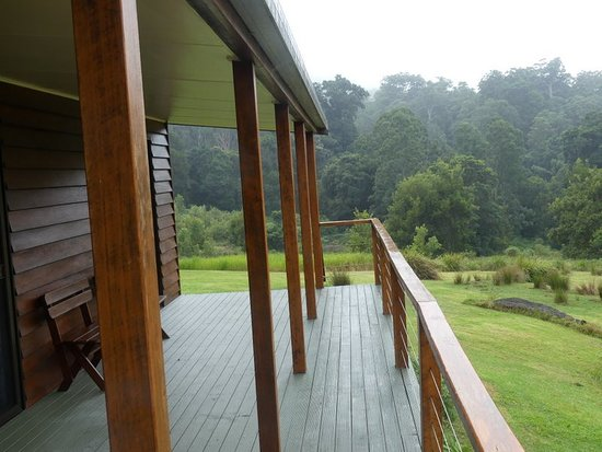 Kyogle, Australia: The cabin verandah and forest (though closer forest faces the verandah).