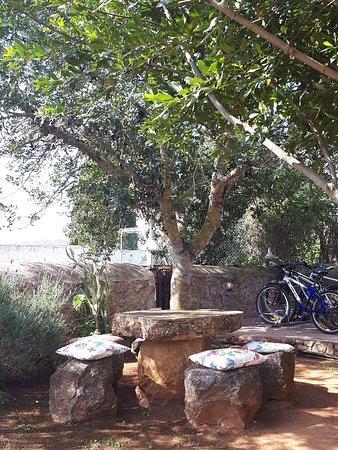 Santa Agnes de Corona, Spain: 20180506_102803_large.jpg