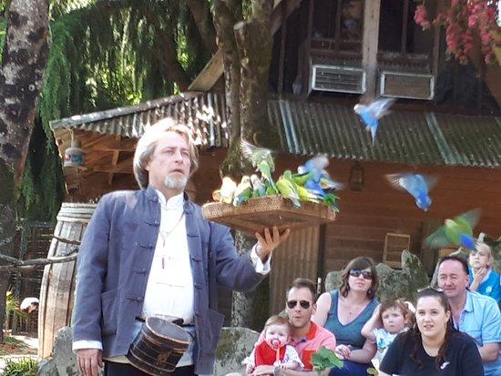 Saint Jacut les Pins, ฝรั่งเศส: Spectacle d'oiseaux
