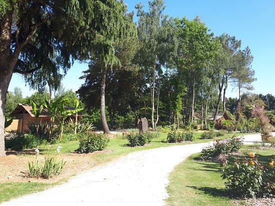 Saint Jacut les Pins, ฝรั่งเศส: Un chemin du parc