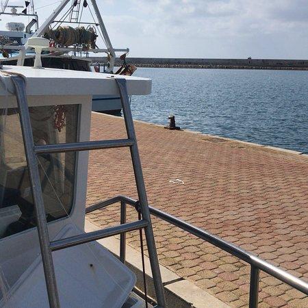 Pesca Turismo il Delfino