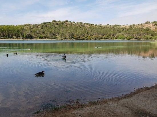 Lagunas de Ruidera: 20180520_104646_large.jpg