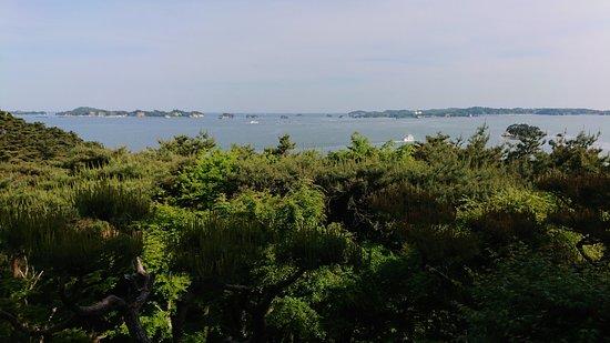 Matsushima-machi, Jepang: 視界良好