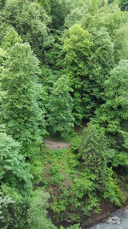 Le Parc Thermal: vue d'en haut sur la passerelle