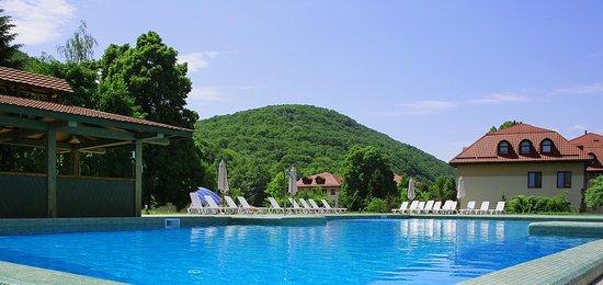 Antalovtsi, أوكرانيا: Басейн з чистою гірською водою – чудове місце для відпочинку у колі друзів або сім'єю.