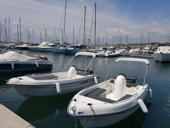 Sealion Boat