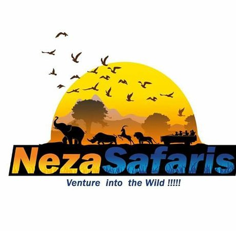 TravelNeza Safaris