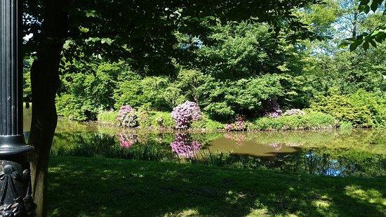 Pszczyna Historic Park: Zabytkowy Park Pszczyna
