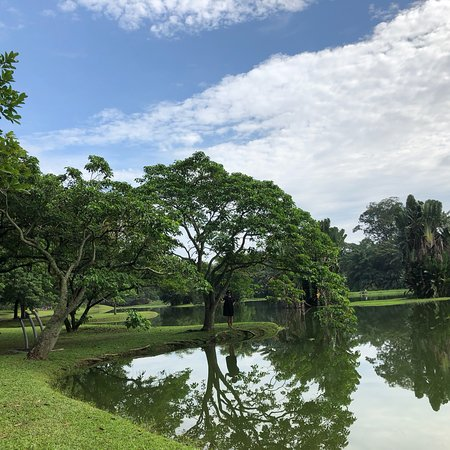 Taiping Lake Gardens: photo2.jpg