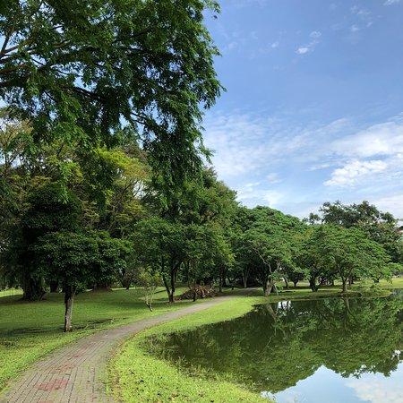 Taiping Lake Gardens: photo3.jpg