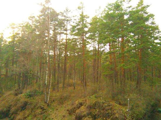 Manzherok Foto