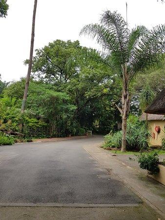 Hotel Numbi & Garden Suites: 20180331_071750_large.jpg