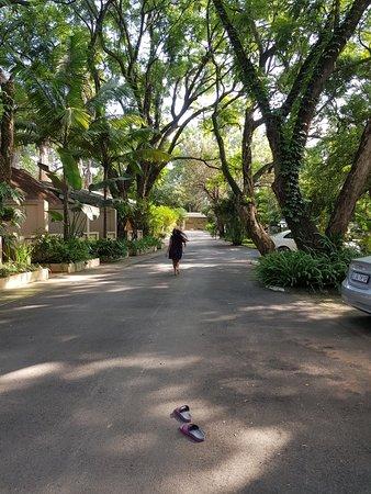 Hotel Numbi & Garden Suites: 20180331_082705_large.jpg