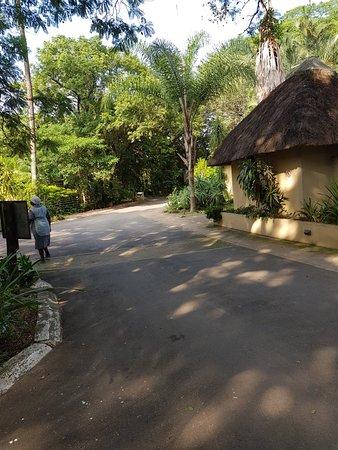 Hotel Numbi & Garden Suites: 20180331_082736_large.jpg