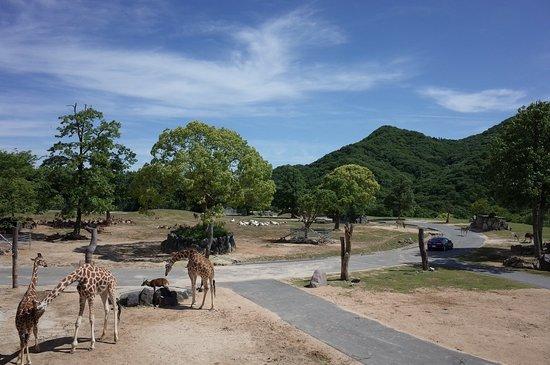 Himeji Central Park Φωτογραφία