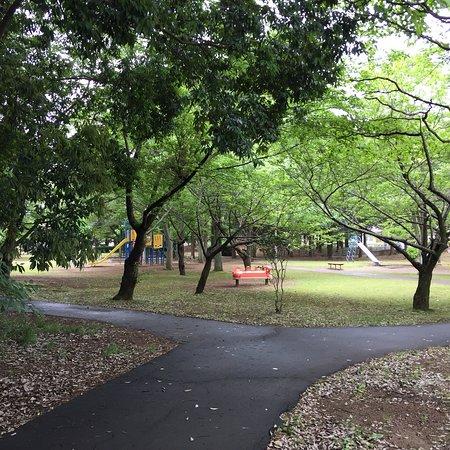 Hiyoshidai Central Park