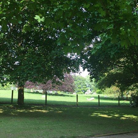 Kirklevington, UK: photo1.jpg