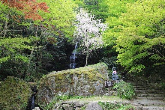Ryuzoji Temple
