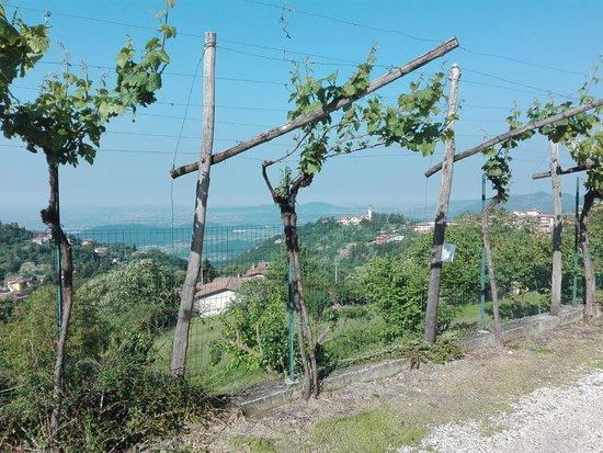 Brione, Italy: Agriturismo Ruer Verda