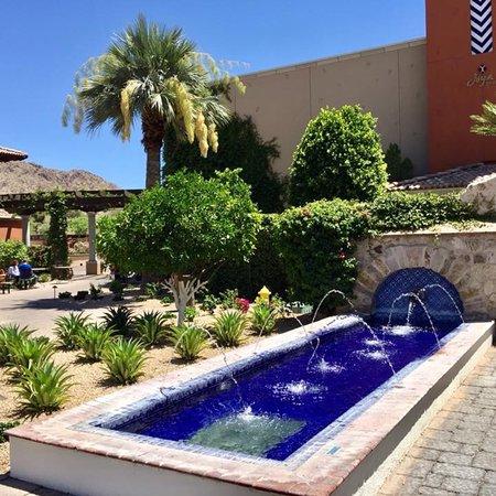 Paradise Valley, AZ: photo8.jpg