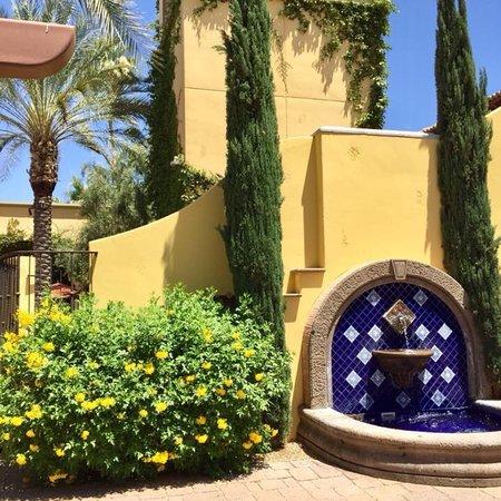 Paradise Valley, AZ: photo9.jpg