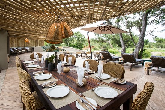 Pool - Picture of Amani Safari Camp, Klaserie Private Game Reserve - Tripadvisor
