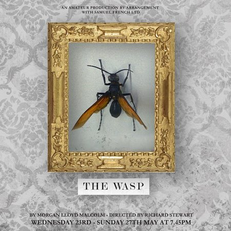 Bromley, UK: 23rd - 27th May The Wasp by Morgan Lloyd Malcolm