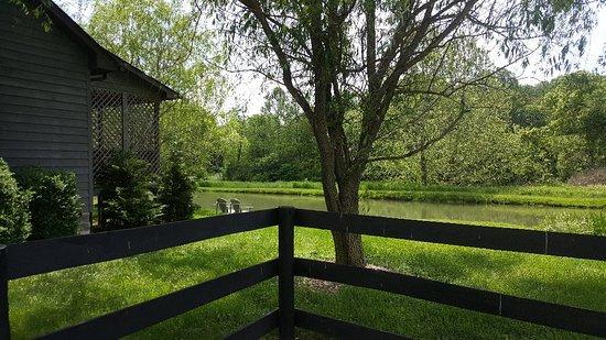Steeles Tavern, فيرجينيا: 20180520_112349_large.jpg
