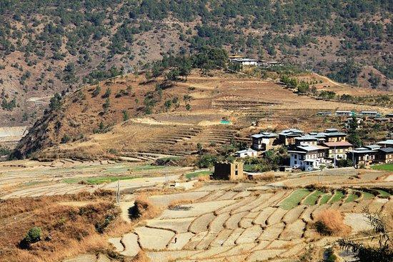 Paro District, Μπουτάν: We had a picnic right near this village.