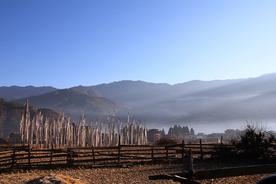 Paro District, Bhutan: Prayer flags dot the landscape