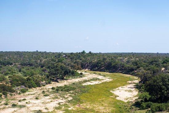 Klaserie Private Game Reserve Picture