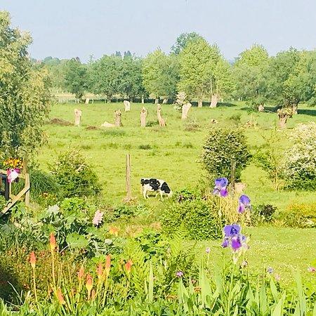 Les Prés de Mautort : Vue du jardin